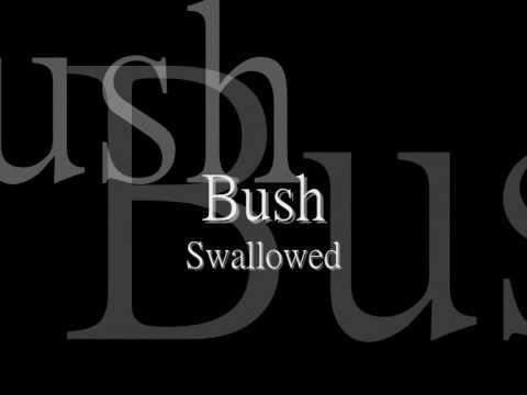 Bush - Swallowed [lyric] HQ