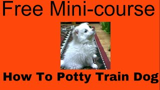 How To House Train Your Dog |free Mini-course| How To Potty Train Your Puppy