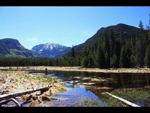 Rocky Mountain National Park - Trail Ridge Road- From Grand Lake to Bear Lake (4K UltraHD)