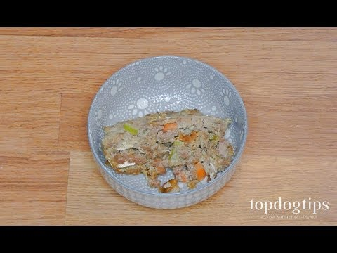 Ground Beef Dog Food Recipe - YouTube