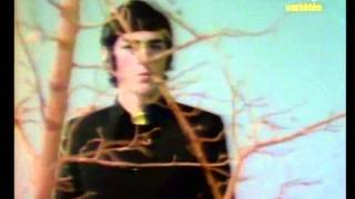 Érick Saint-Laurent - Eleonor Rigby (1967)