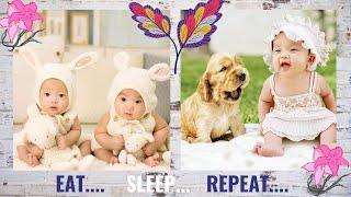 CUTE BABIES || COMPILATION OF CUTE AND FUNNY BABIES || MUCHKU PUCHKU