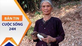 Người mẹ 'thân vạc nuôi cò' 60 năm | VTC1
