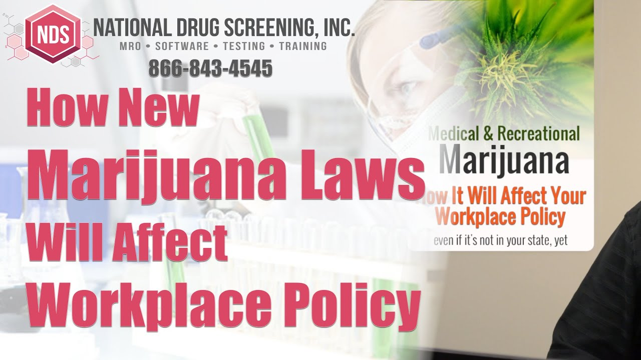 workplace drug screening opinion A way to ensure the person being hired is drug free is to do pre-employment drug screening the way to ensure the employees remain drug free is to conduct periodic on.