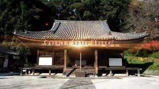 紀州徳川家歴代藩主の御廟が、長保寺本堂裏手の山腹に,、約1万坪の広さ...