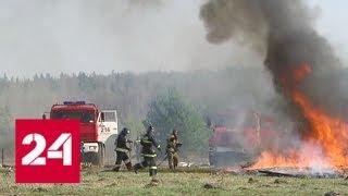 В Подмосковье прошли масштабные учения в преддверии пожароопасного сезона - Россия 24