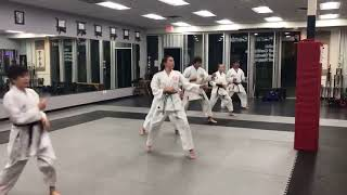 Training at dojo