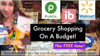 Grocery Shopping On A Budget + Freebie Items | Easy Walmart Deals | Publix 2/19-2/25 Lets Shop!