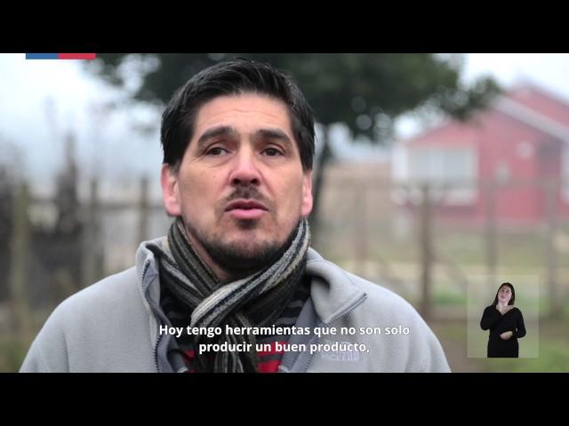 Centros de Desarrollo de Negocios | Sercotec