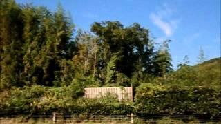 九州産交バス【高速ぎんなん号】北九州~熊本線#7