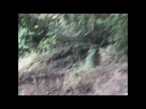 Antigua Rides 4x4 Adventure