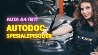Hvordan bytte Baklyspære AUDI A4 (8EC, B7) - online gratis video