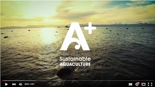 A+ New Zealand Sustainable Aquaculture