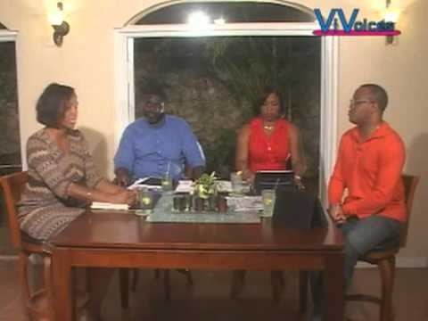 VI VOICES The 2012 Elections Stacey Plaskett Interview