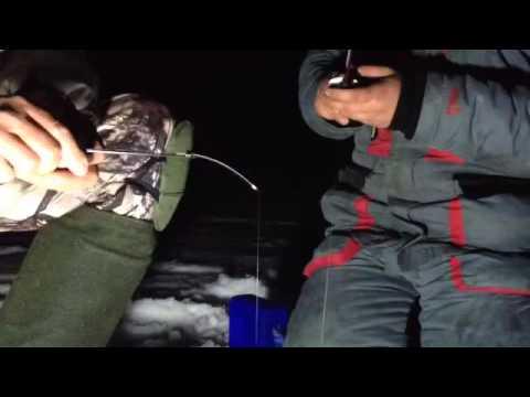 ловля красноперки ночью