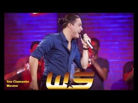 As Melhores Musicas Do Wesley Safadao 2015/2016