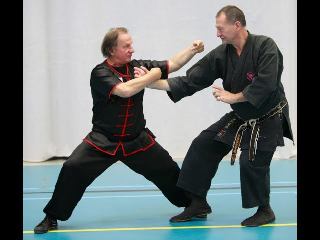Are you ready for sunday 5 july 2020 special Workshop 2 GM Walter Toch & Hubert Laenen 14u till 17u