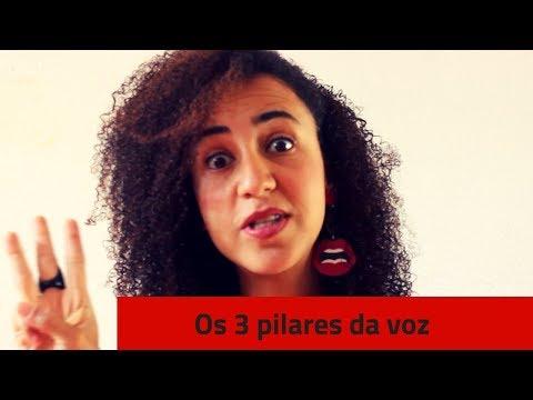OS 3 PILARES DA VOZ