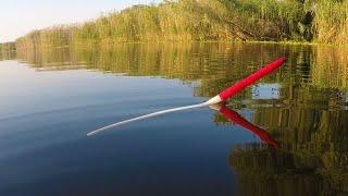 Крупны КАРАСЬ Рыбалка на поплавок на вечерней зорьке осенью Клёв карася на маховую удочку