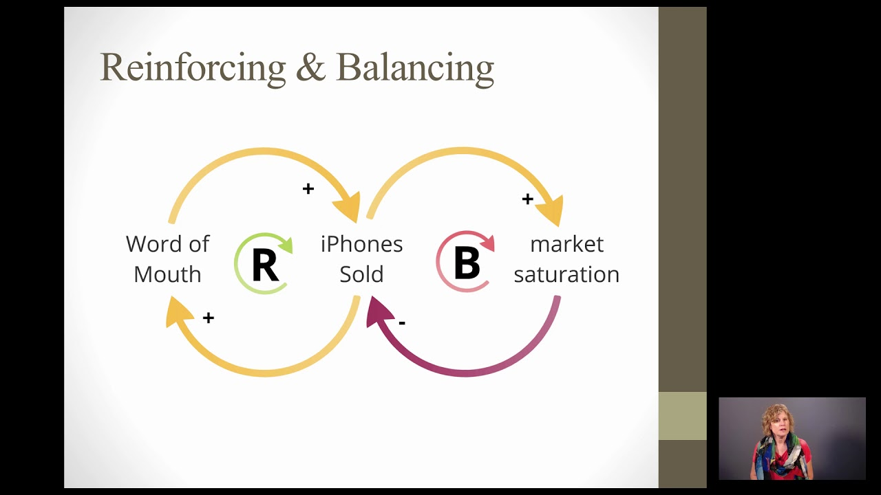 Systems Thinking Causal Loop Diagrams
