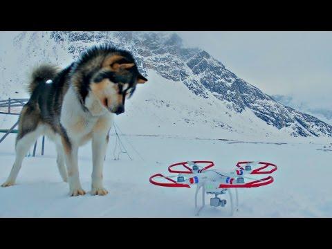 Drone Flight in Sisimiut