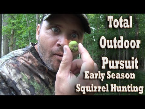 How To Hunt Squirrels - Early Season .22 Cal Rifle Hunting Tips & Tactics