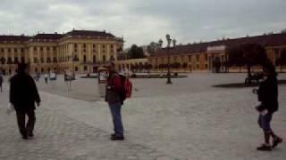 Austria - Maria Theresa Palace- Horse