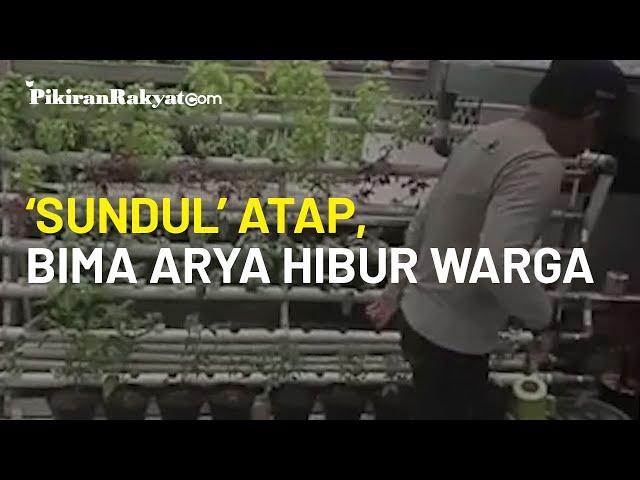 Kocak, Video Wali Kota Bogor Bima Arya Sugiarto 'Sundul' Atap Hidroponik Hibur Warga Bogor