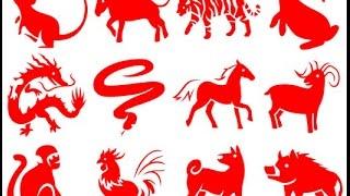 видео 2013 год какого животного по гороскопу