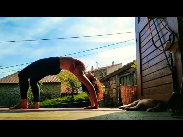 Morning Yoga Flow in NataZen's World 💖🐦😍