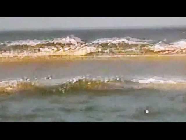 Scratby Sands Seala Boat Trip