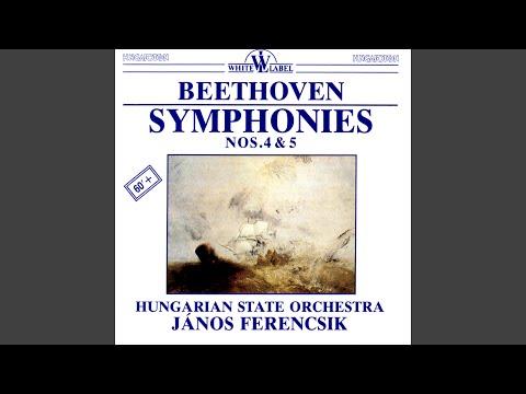 Symphony No. 4 in B Flat Major Op. 60: I. Adagio - Allegro vivace