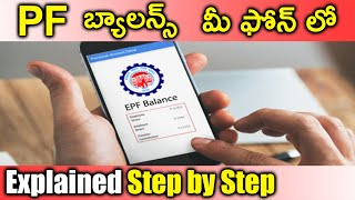 How to Check PF Balance Online - Check Your PF Balance from Your Phone