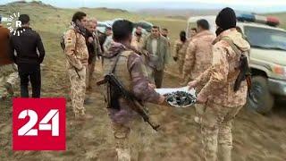 Смотреть видео Союзники США по НАТО не спешат вмешиваться в конфликт с Ираном - Россия 24 онлайн