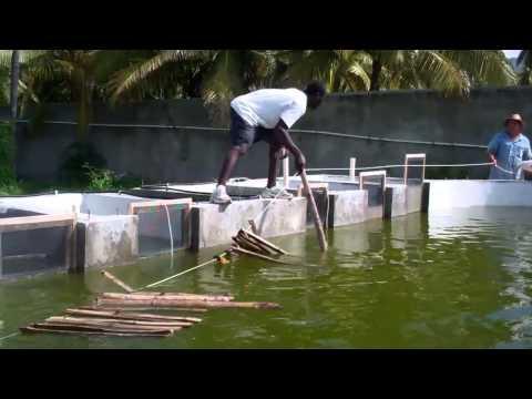 Henri Christophe - Installing Bamboo