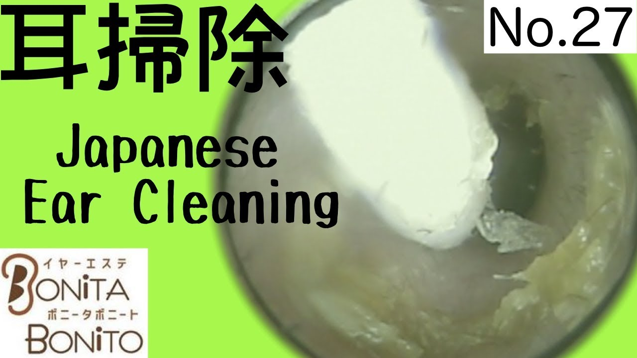 Cozy Japanese Ear Cleaning #27