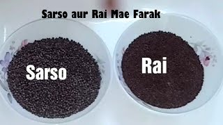 Download Sarso aur Rai daano me antar |Use of mustard seeds| sarsoj aur rai daano ka farak
