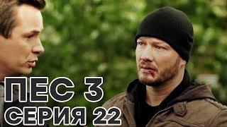 Сериал ПЕС - 3 сезон - 22 серия - ВСЕ СЕРИИ смотреть онлайн | СЕРИАЛЫ ICTV
