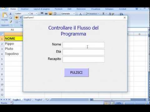 Controllare il flusso istruzioni e dati in Excel VBA - Range, Rows, Count,  SetFocus e KeyCode