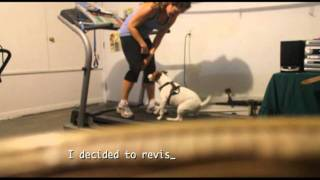 Max And The Treadmill