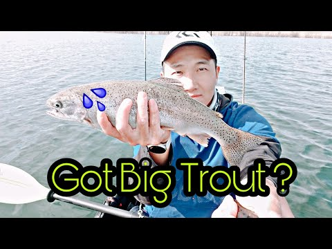Searching For Big Trout At My Local Reservoir ! (Kayak Trout Fishing) 송어 낚시