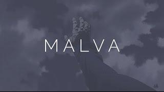 Salute x Malva (AMV)