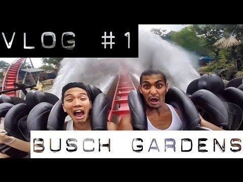VLOG #1 - Busch Gardens - Tampa, FL