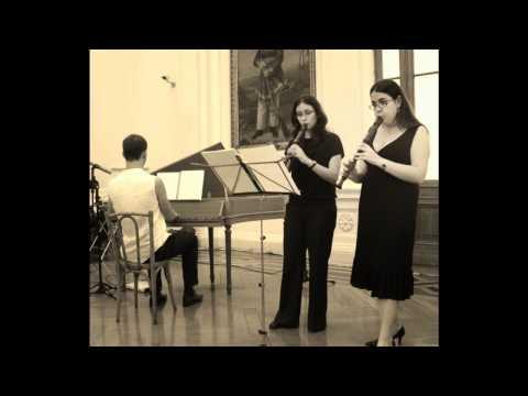 Il dolcimelo - Sarabande Grave (Suite V) MARIN MARAIS