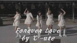 "FOREVER LOVE - ℃-ute ( C-ute , Cute ) I covered and arranged ""Forev..."