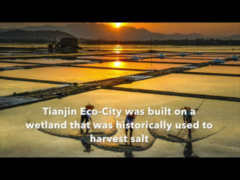 Eco Cities in China
