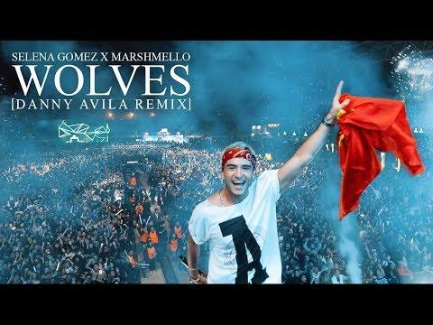Selena Gomez & Marshmello - Wolves [DANNY AVILA REMIX]