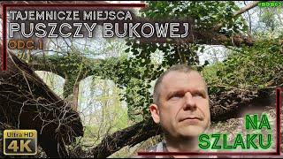 Na szlaku - Puszcza Bukowa 1 - Jezioro Szmaragdowe, tajemniczy tunel i mosty