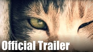 Kedi - OFFICIAL MOVIE TRAILER - Bülent Üstün, Cats, Documentary, 2017