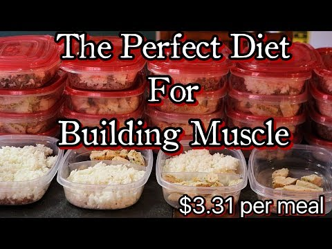 The Perfect Diet For Building Muscle| Meal To Meal| Cooking Included